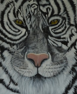 White Tiger - Art print